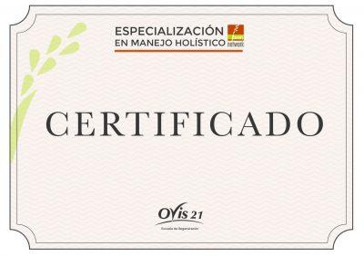 Certificado modelo-01